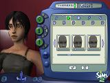 [The Sims 2-3]